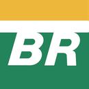 Petrobras Logo